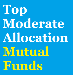 Best Moderate Allocation Mutual Funds 2014