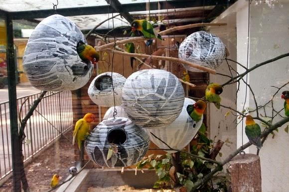 Parc de l'orangerie oiseaux