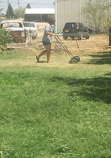 Picture of kid helping with chores in New Mexico