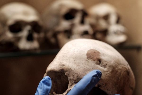 cráneo, Barranco de Guadayeque, Gran Canaria