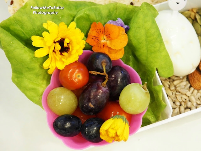 Auntie Lilly's DIY Mission Bento Creation