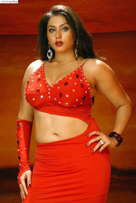 Namitha Sexy Navel Pictures-Hot Collection