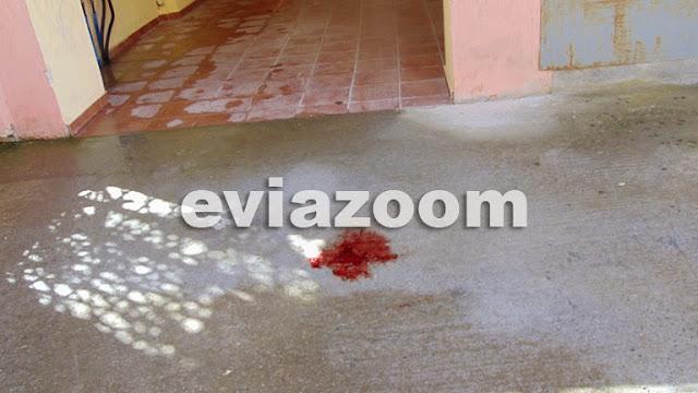 Χαλκίδα: Η διπλή αυτοκτονία που συγκλόνισε το πανελλήνιο στη χρονιά που φεύγει - Μάνα και γιος βούτηξαν στο κενό από τον 5ο όροφο της πολυκατοικίας (ΦΩΤΟ & ΒΙΝΤΕΟ)