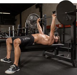 exercícios compostos para quem está começando na academia
