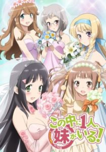 Download Kono Naka ni Hitori, Imouto ga Iru Subtitle Indonesia (Batch)