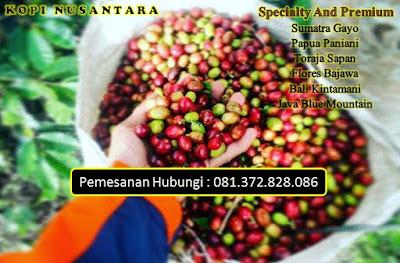 Jual Grosir Kopi Flores Bajawa Surabaya