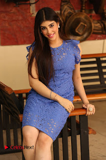 Actress Aditi Singh  Pictures in Short Dress at Movie Interview  0231.JPG