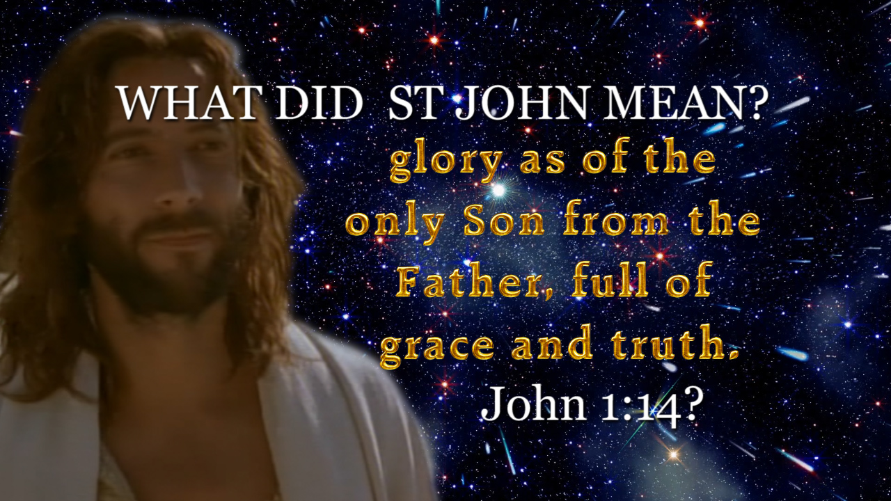 WHAT Did St John Mean: glory as of the only Son from the Father. John 1:14?