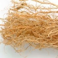 Kumkumadi Oil Ingredient - Vetiver Grass