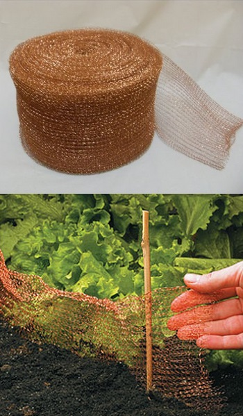 Slugs Rats And Mice Control 101 Gardening