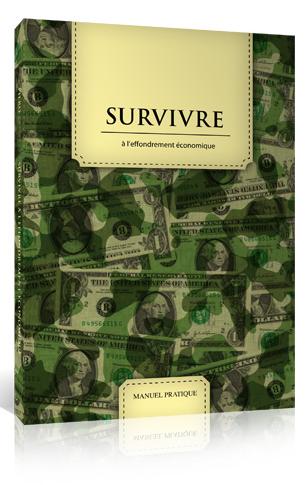 Acheter Survivre à l'effondrement économique