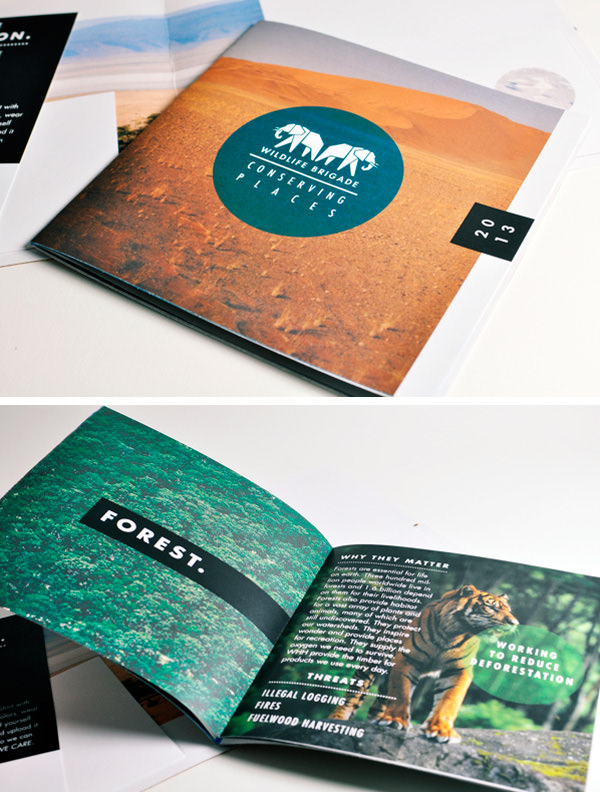 60 best creative brochure design for inspiration bull share for Creative brochure designs