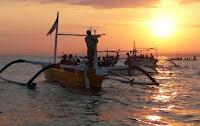 Bali-dolphin-tours