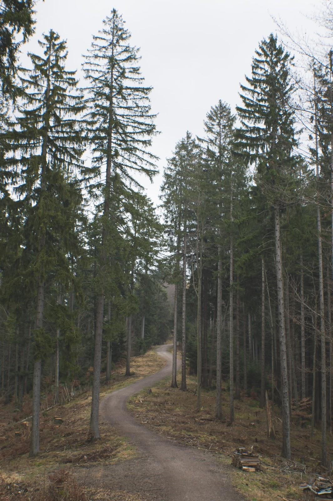 Route to Riederstein