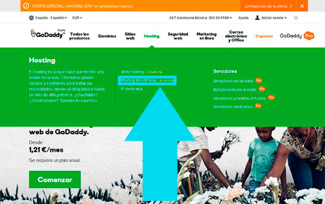GoDaddy Selección del Hosting de Wordpress