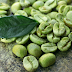 Green Coffee Bean Buon Ma Thuot Coffee