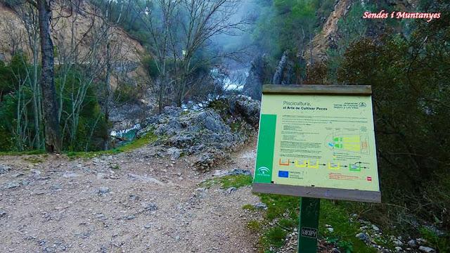 Piscicultura, río Borosa, Pontones, Sierra de Cazorla, Jaén, Andalucía