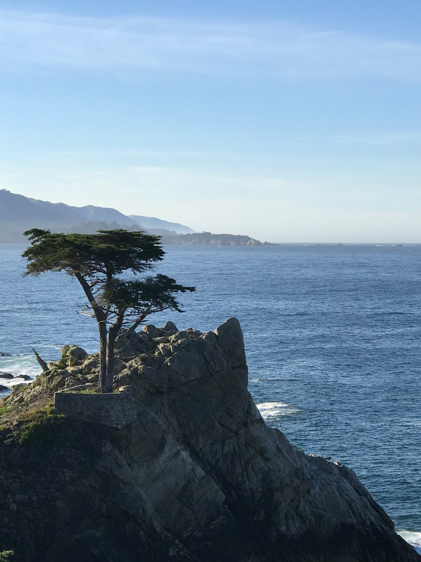 pebble beach, What to do on the PCH, stops to take on a road trip, california travel