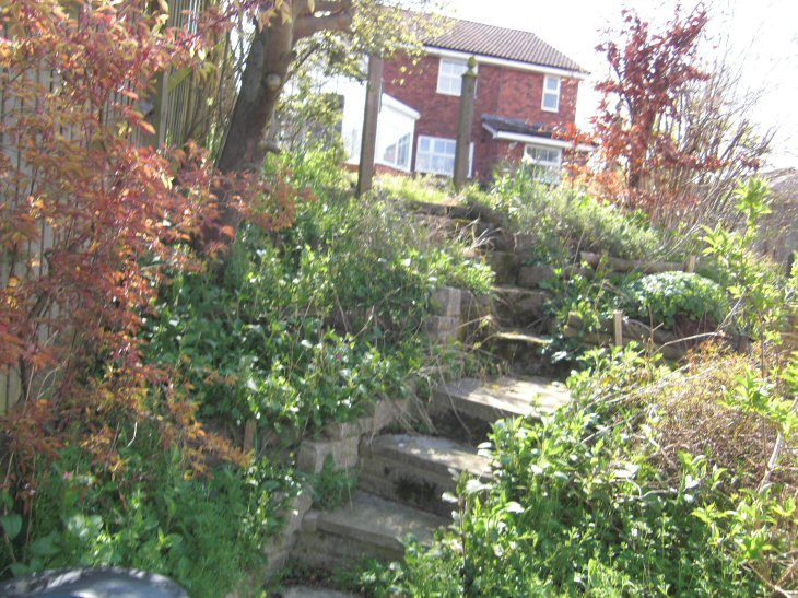 A Life Designing Sloping Garden Design  Case Study  Post 1