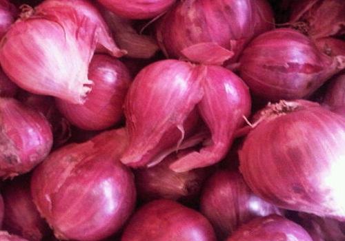 Mengenal Khasiat Lain Bawang Merah untuk kesehatan