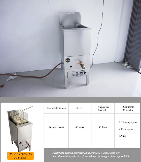 Jual Deep Fryer Gas Dengan Thermostast Murah
