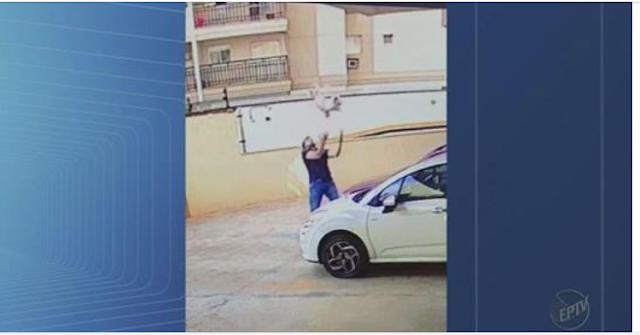 Shih Tzu cai do 9º andar de prédio e é salvo por vizinho; veja vídeo