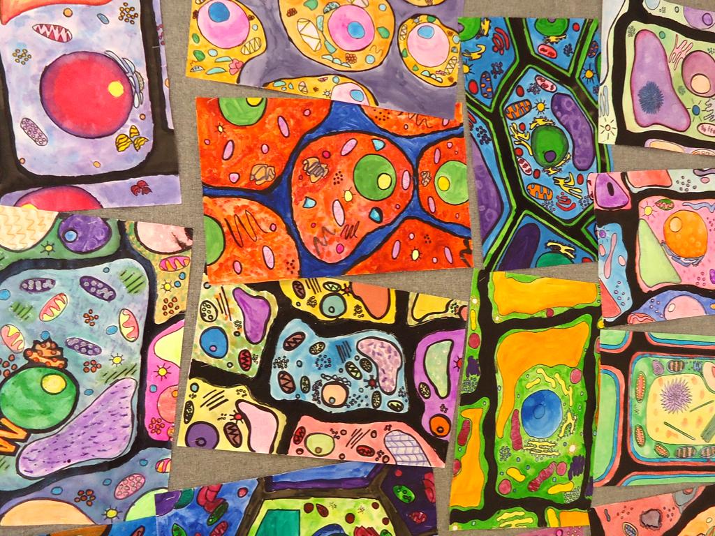 Artimus Prime 6th Grade Watercolor Cells