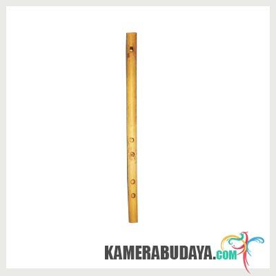 Serdam, Alat Musik Tradisional Dari Lampung