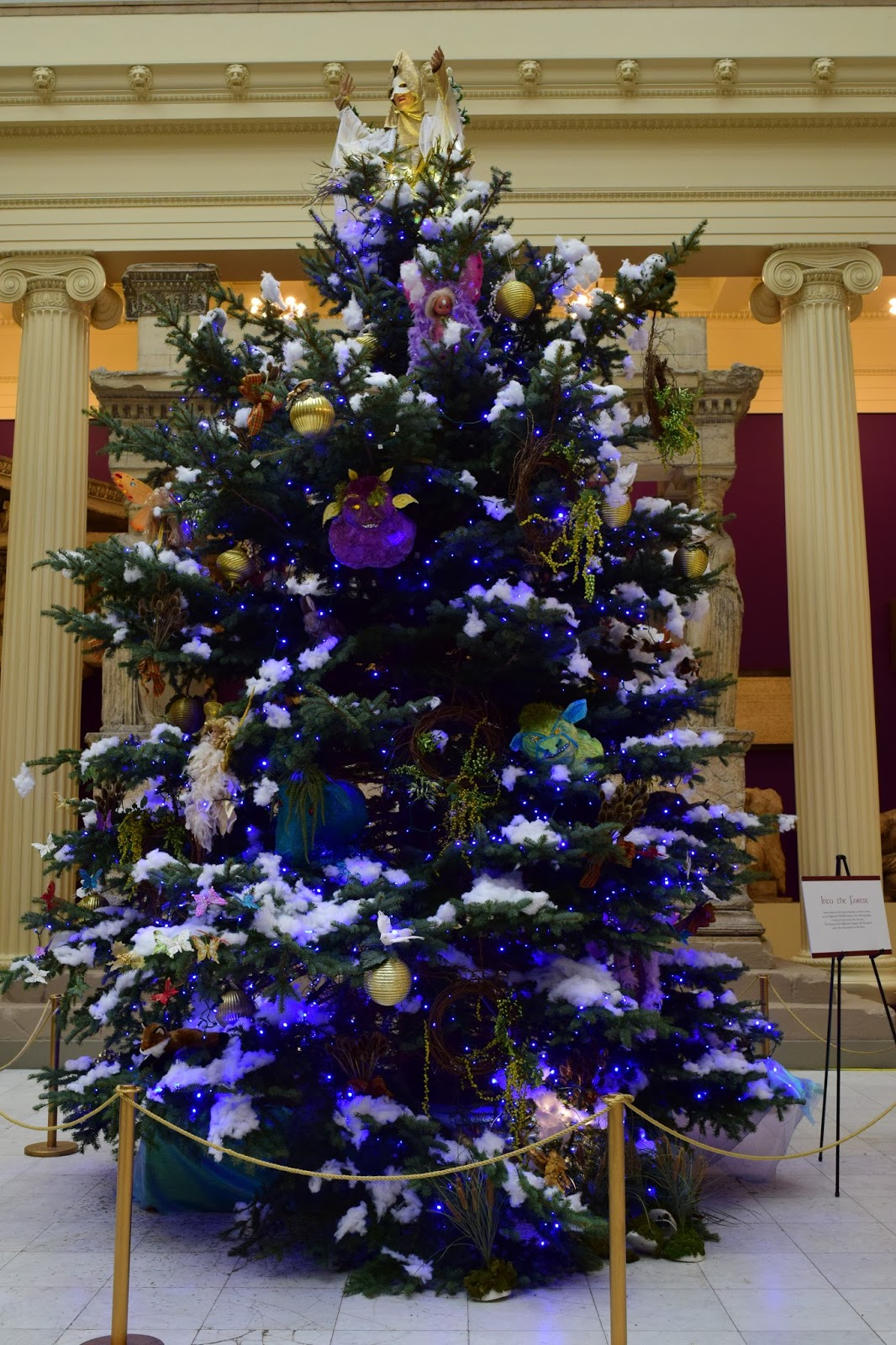 Christmas Trees at Carnegie Museum of Natural History: A ...