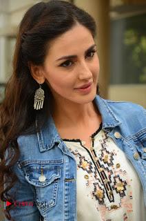 Actress Farah Karimi Pictures at Thikka First Look Launch  0002