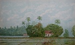 http://bijupainting.blogspot.in/2016/11/lazy-morning-kuttanad-series-acrylic.html