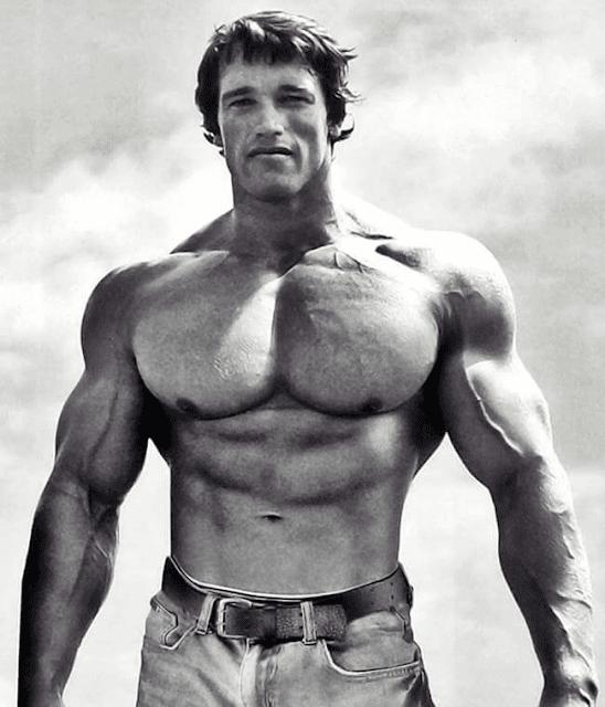 Arnold Schwarzenegger Mr Olympia Massive Body Builder Wallpaper Photo