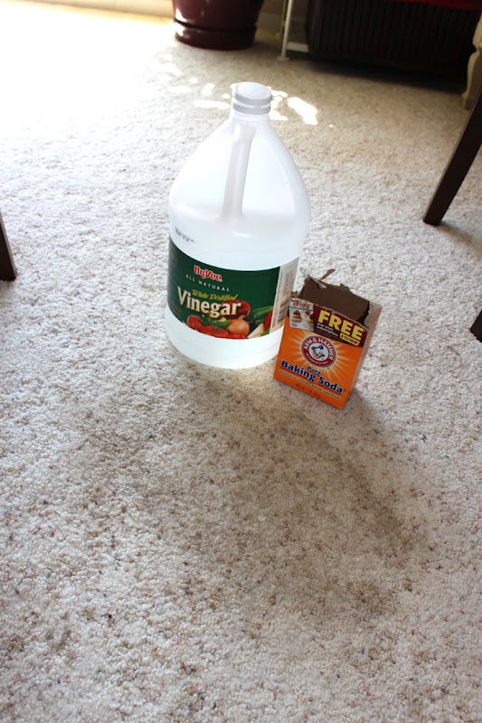 Cleaning Queen Tip 2 Cleaning Stains From White Carpets