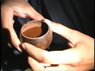 que es la ayahuasca