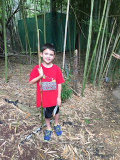 Jackson standing with a large stick of bamboo in his hand that is taller than he is.