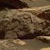 NASA: Mars Rover da NASA avista urso pardo morto no planeta vermelho