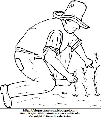 Dibujo de un campesino sembrando por el Día del campesino para colorear, pintar e imprimir. Dibujo de un campesino hecho por Jesus Gómez