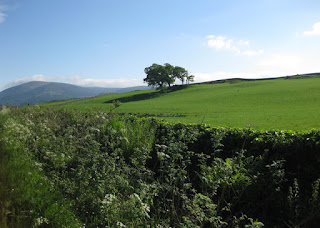 Blue sky and rolling green hills, Galloway region, Scotland