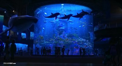 Finding Dory Marine Life Institute Tank Screenshot