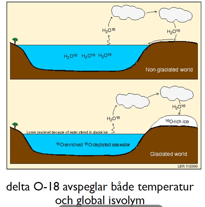 fossila bränslen bildats