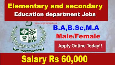 Elementary and Secondary Education Department Jobs Latest 2019