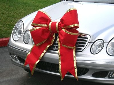 Cottage Making Mommy: Funny Christmas Decorations for Your Car