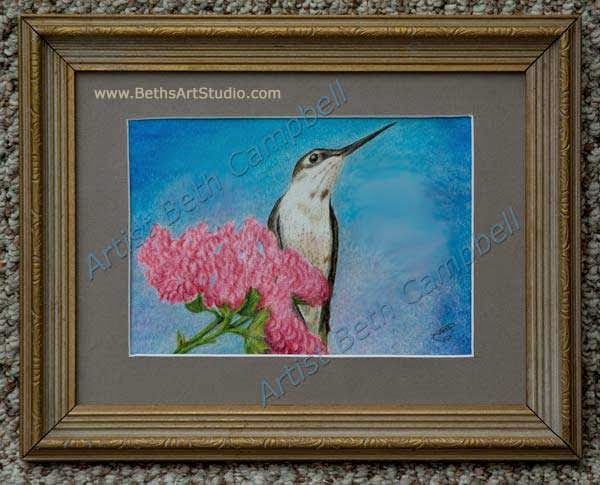 Hummingbird humming bird wildlife painting coloured colored pencil Beth Campbell