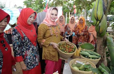 Pekon Singosari  Kecamatan Talang Padang Wakili Tanggamus pada Lomba Kesatuan Gerak PKK-KB Kesehatan Lampung