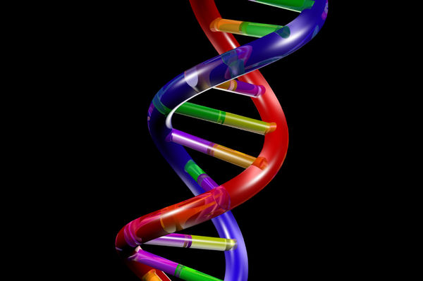 spirituality dreams and prophecy dreams and visions of the dna