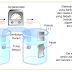 Lembar Kerja Praktikum - Elektrokimia (Sel Volta)
