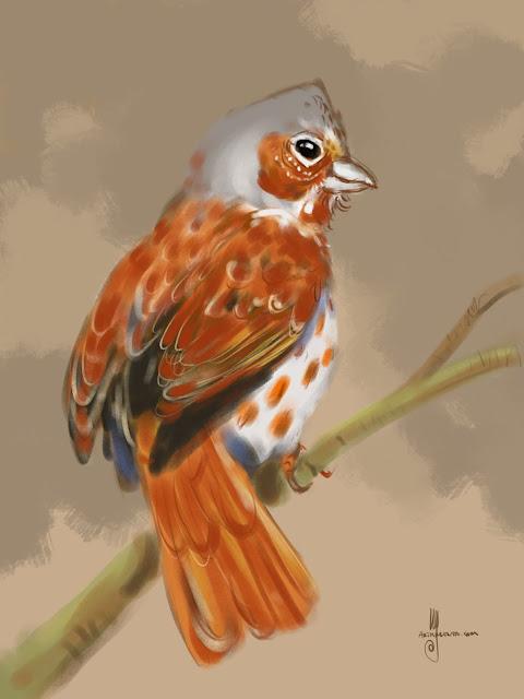Fox Sparrow Bird painting by Artmagenta
