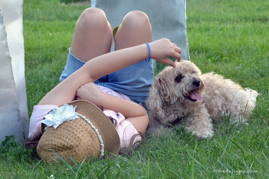 A girl and her dog enjoy the last of the dog days of summer