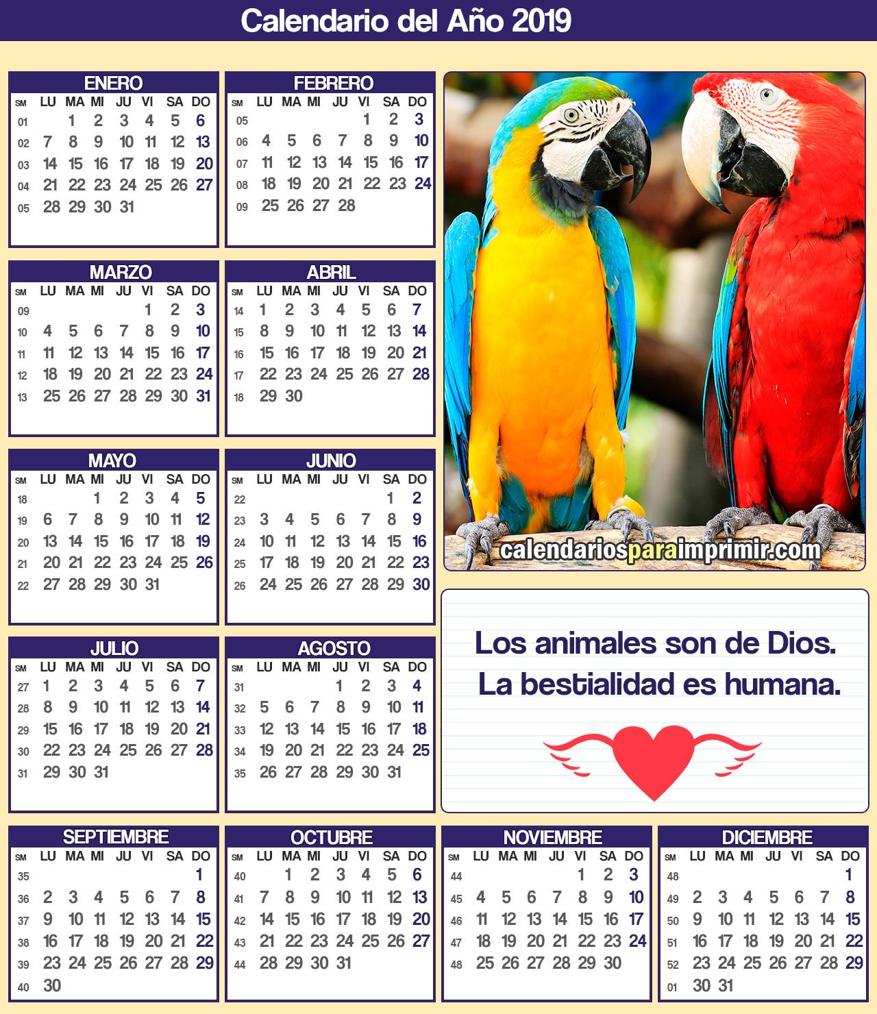 calendario 2019 para imprimir animales