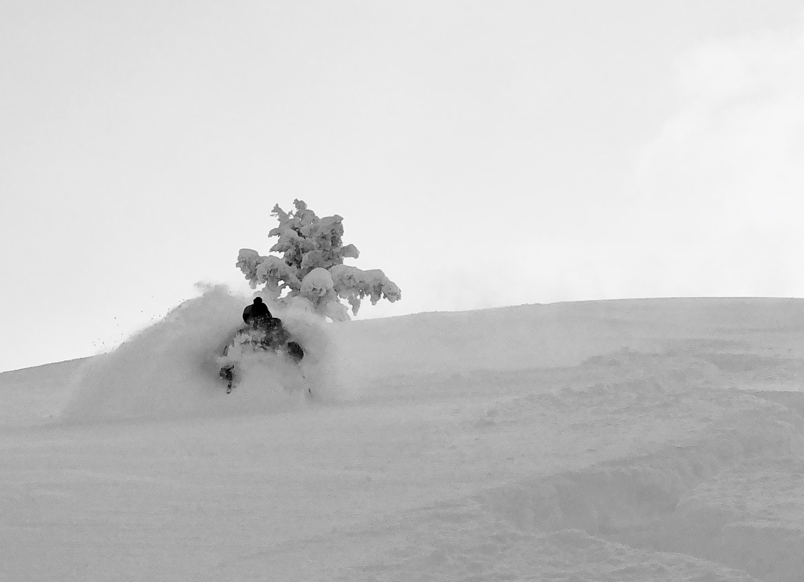 Ogden Avalanche Information: 2/17-2/24 Review, Powder Skiing